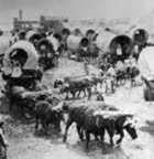 Wagon train of pioneers going to the unknown west at Great Bend, Kansas.